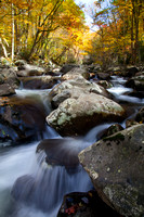 Great Smoky Mountains-7498