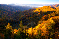 Great Smoky Mountains-7289
