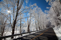 Roan Mountain Winter-8256