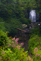 Waterfalls - Meigs Falls - Smokies-1513