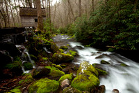GSMNP- Chimney Top loop-0977