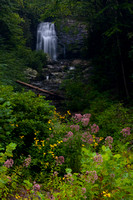 Waterfalls - Meigs Falls - Smokies-1492