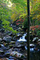 Middle Prong Little River - Smokies TN